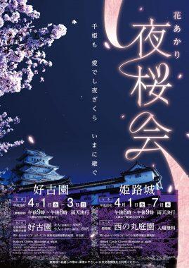 2016夜桜ポスター